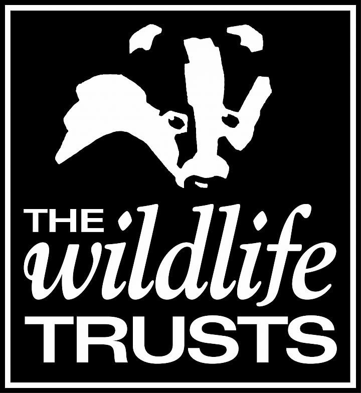 The Wildlife Trust